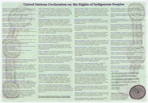 The United Nations Declaration on the Rights of Indigenous Peoples, a document that was long awaited by indigenous peoples and their defenders throughout the world.