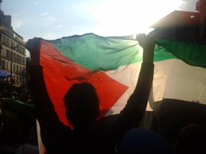 A demonstrator raises the Palestinian flag during a July 2014 rally in Paris against the Israeli attack on Gaza. (C) AWC/Bernard J. Henry