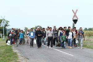 migrants_3