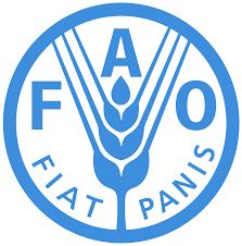 FAO.png